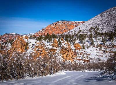 Snow on Kolob Terrace Road
