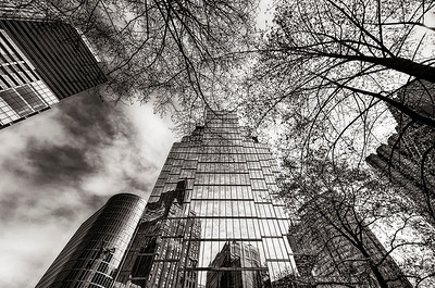 Spring in the City - BW