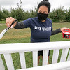 The 25th annual United Way Day of Caring was held on Friday, September 18, 2020. Many came out to volunteer to help work on projects in North Central Massachusetts. Volunteer Barbara Hernandez works on painting the gazebo at Sholan Farms in Leominster. SENTINEL & ENTERPRISE/JOHN LOVE