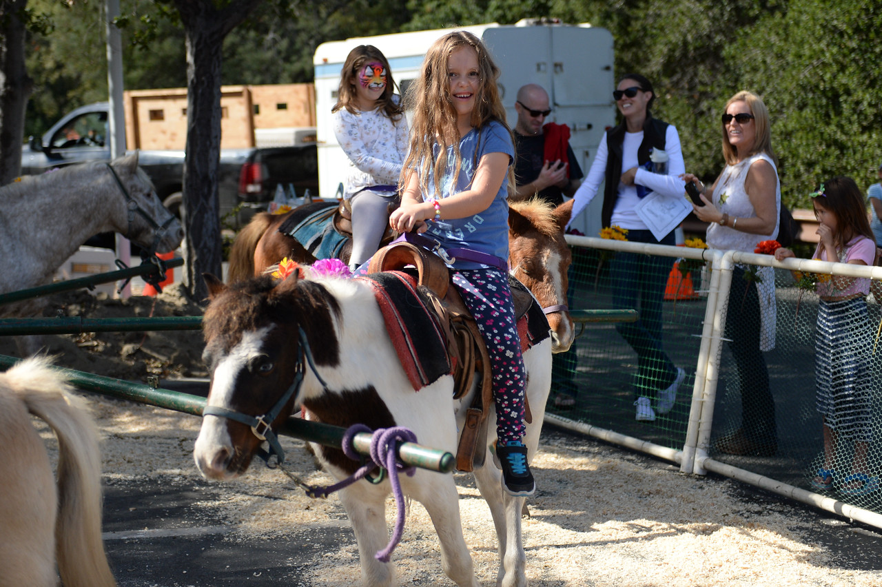 2015 Day of the Horse-26