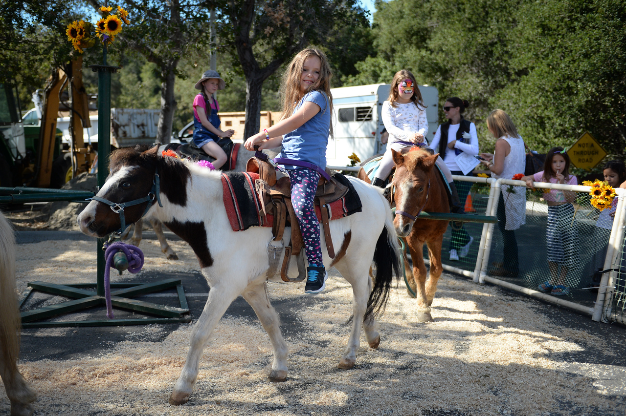 2015 Day of the Horse-27