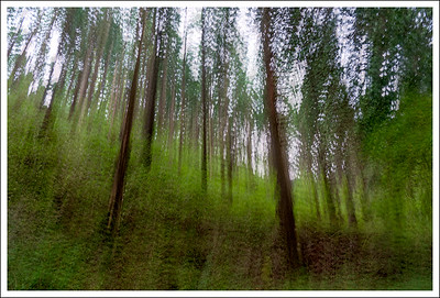 A multiple exposure (6 images) of the same area.