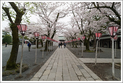 The pathway leading to the main gate of the shrine.