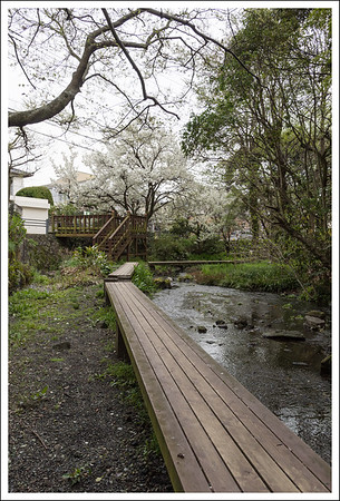 a portion of the walkway along the stream.