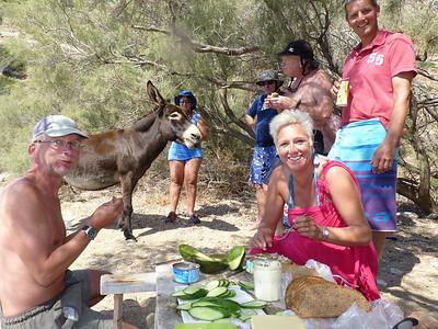 West Kimolos with Donkey