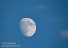 The moon (10/12/2016, Woodbridge Ecological Reserve, South Unit)<br /> 150-600mm F5-6.3 DG OS HSM | Sports 014 @ 600mm f8 1/400s ISO400