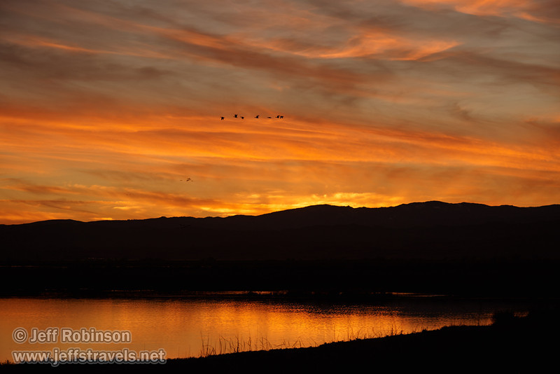 Orange sunset over the water with birds flying in the sky. (1/19/2013, Sacramento National Wildlife Refuge)