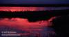 Sunset (from Park & Stretch at SE end) (1/10/2015, Sacramento National Wildlife Refuge)<br /> EF24-105mm f/4L IS USM @ 105mm f5.6 1/100s ISO400