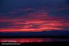 Sunset (from Park & Stretch at SE end) (1/10/2015, Sacramento National Wildlife Refuge)<br /> EF24-105mm f/4L IS USM @ 90mm f5.6 1/80s ISO640