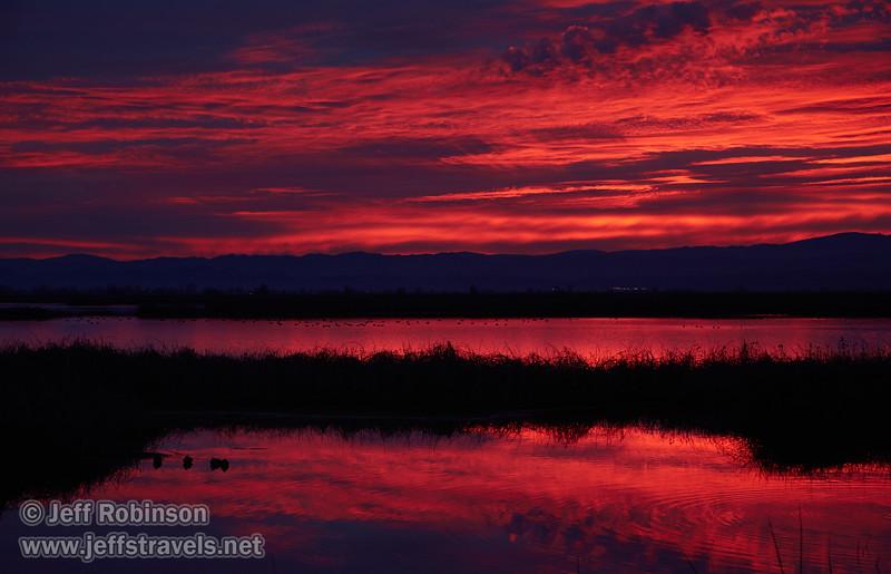 Sunset (from Park & Stretch at SE end) (1/10/2015, Sacramento National Wildlife Refuge)<br /> EF24-105mm f/4L IS USM @ 73mm f5.6 1/100s ISO400