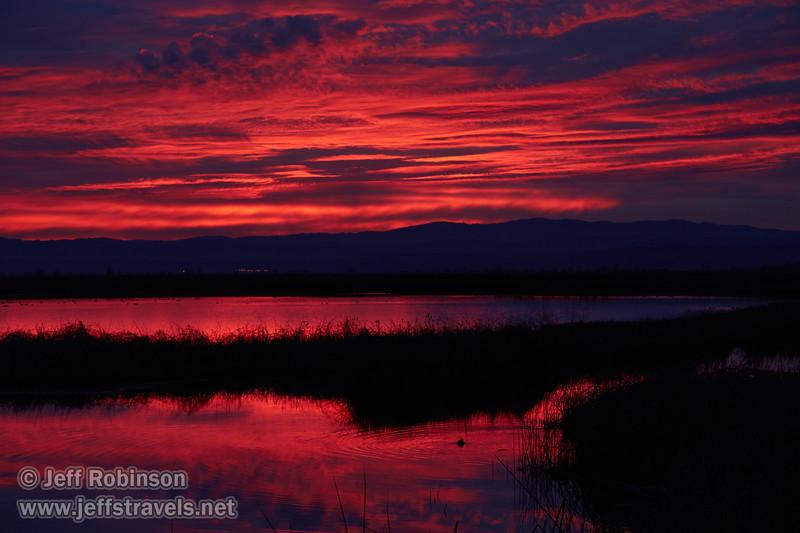 Sunset (from Park & Stretch at SE end) (1/10/2015, Sacramento National Wildlife Refuge)<br /> EF24-105mm f/4L IS USM @ 75mm f5.6 1/100s ISO400