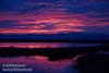 Sunset (from Park & Stretch at SE end) (1/10/2015, Sacramento National Wildlife Refuge)<br /> EF24-105mm f/4L IS USM @ 75mm f5.6 1/100s ISO640