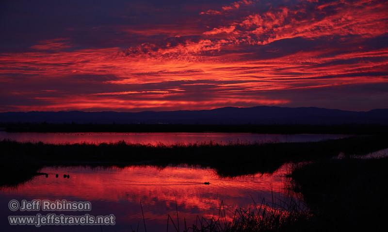 Sunset (from Park & Stretch at SE end) (1/10/2015, Sacramento National Wildlife Refuge)<br /> EF24-105mm f/4L IS USM @ 55mm f5.6 1/100s ISO400