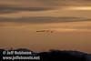 Four distant sandhill cranes flying against skyline (10/4/2009, Isenberg Sandhill Crane Reserve near Lodi, CA)