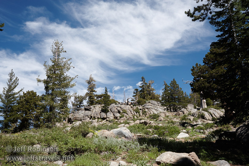 Bushes, rocks, and trees against blue sky with wispy white clouds, with yellow flowers in the foreground (8/13/2011, Carson Pass to Frog Lake hike)<br /> EF-S17-85mm f/4-5.6 IS USM @ 26mm f14 1/160s ISO250