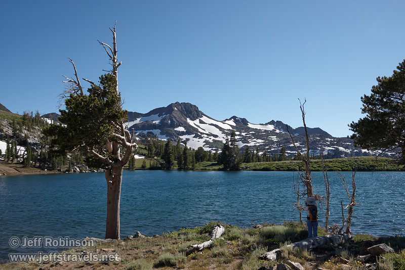 Southerly view of a wind-blown pine (white pine?) and Lynda taking photos on the shore of Frog Lake.  Round Top mountain with patches of snow is in the background. (8/13/2011, Carson Pass to Frog Lake hike)<br /> EF-S17-85mm f/4-5.6 IS USM @ 22mm f10 1/320s ISO200