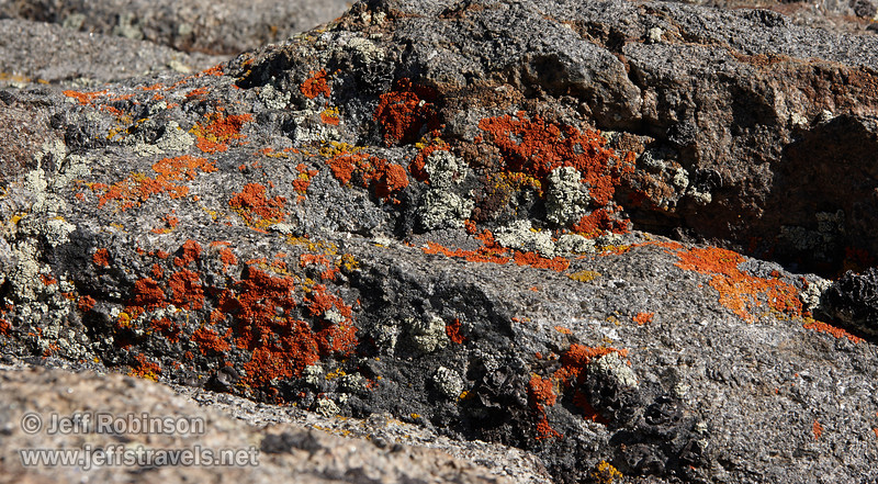 Yellow, orange, red, and light green lichen growing on granite. (8/13/2011, east end of Frog Lake, Carson Pass to Frog Lake hike)<br /> EF-S17-85mm f/4-5.6 IS USM @ 68mm f11 1/400s ISO400