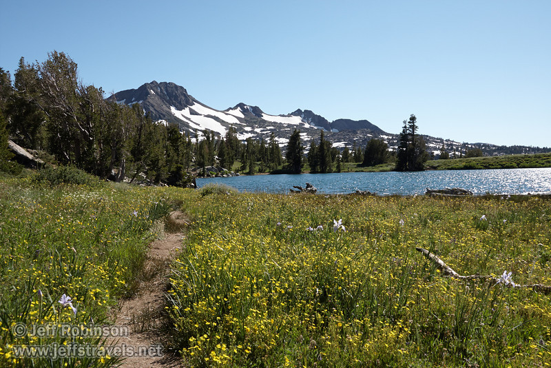 Southerly view of trail through a green meadow filled with yellow flowers and purple lilies, located at the east edge of Frog Lake. Frog Lake and Round Top Mountain with snow patches are beyond. (8/13/2011, Carson Pass to Frog Lake hike)<br /> EF-S17-85mm f/4-5.6 IS USM @ 24mm f13 1/320s ISO320