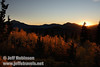 The sun setting behind the mountains with backlit yellow aspen in the foreground. (10/22/2011, highway 89 climbing to Monitor Pass (west side of summit), Fall Color Drive)