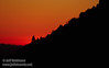 The red glow of the setting sun against a silhouetted ridge with trees (11/2/2013, Wrights Rd.)<br /> EF100-400mm f/4.5-5.6L IS USM @ 400mm f8 1/332s ISO400