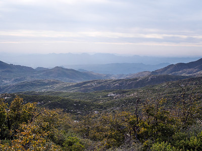Scrub covered mountains