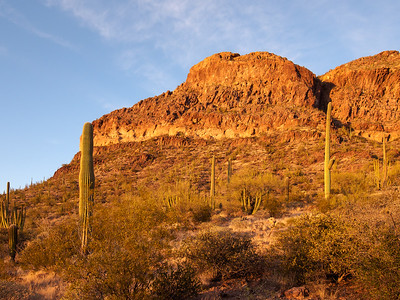 Ajo Mountain Sunset