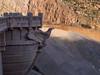 Eagle on the Dam