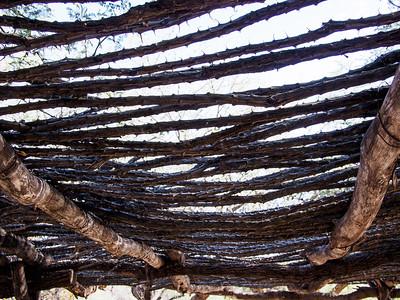 Ocotillo Roof