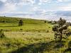 Hart Prairie