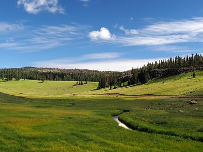 Black River near Thompson Ranch