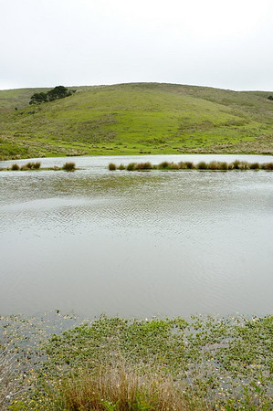 One of many reservoirs