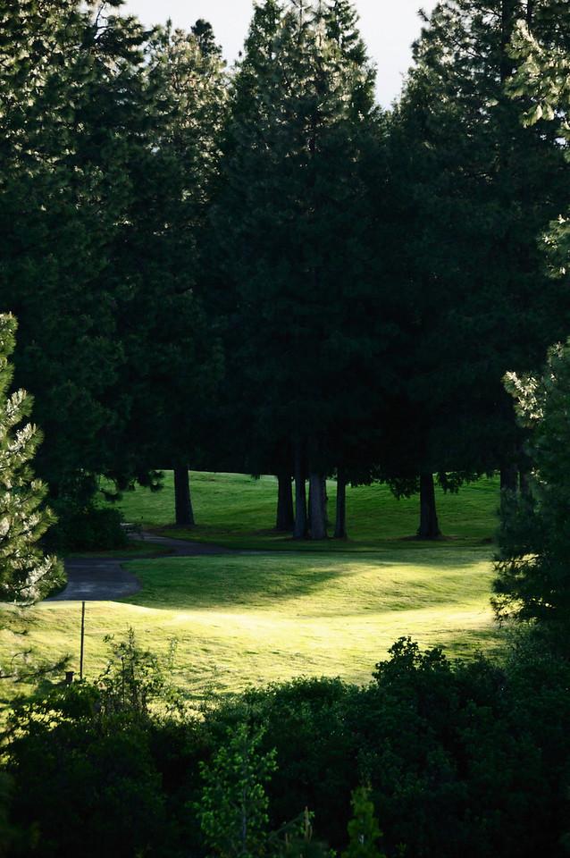 Golf Course at Lake Siskiyou
