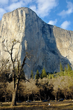 Alison looking at El Capitan