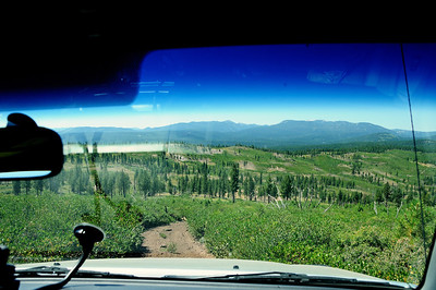 Descending into Bear Valley