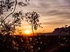 Creosote & Sunrise