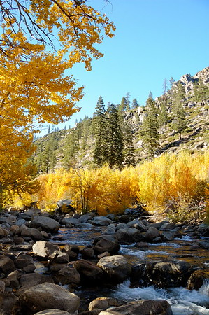 Fall on the Carson