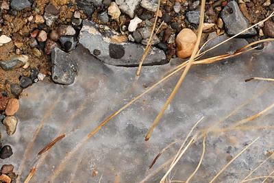 A bit of ice