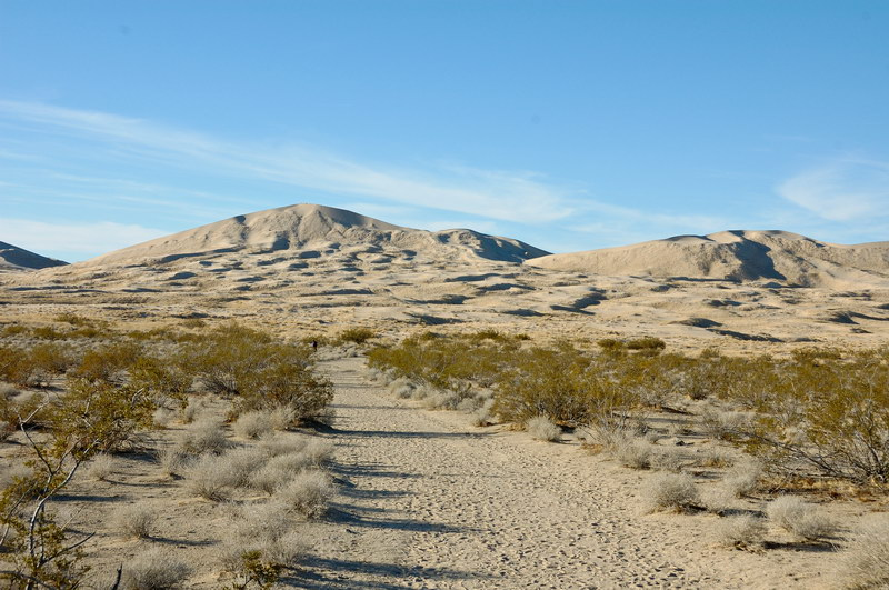 Starting on the trail to Kelso Dunes