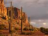 Tres Saguaros