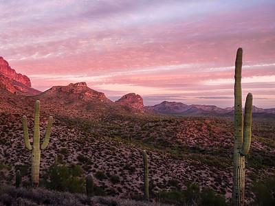 Rose colored desert