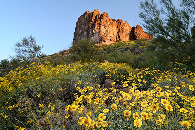 Hewitt Canyon Sunrise