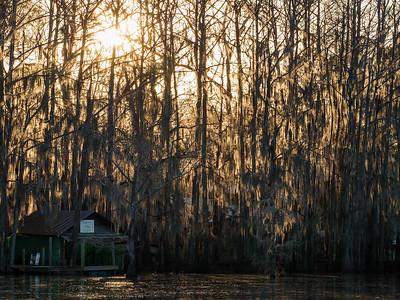 Caddo Lake Spring Break