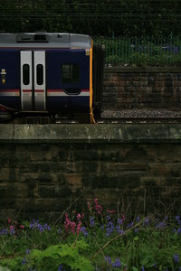 158710_Scotrail_EdinburghPrincesStGardens_18052016 (96)