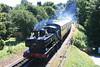 1369_Steam_Buckfastleigh_18072016_DVR (44)