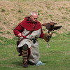 Falconer with Harris Hawk (Raphael historic falconry)