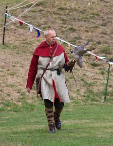 Falconer with Peregrine Falcon (Raphael historic falconry)