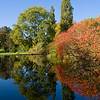 Autumn Day at Kew