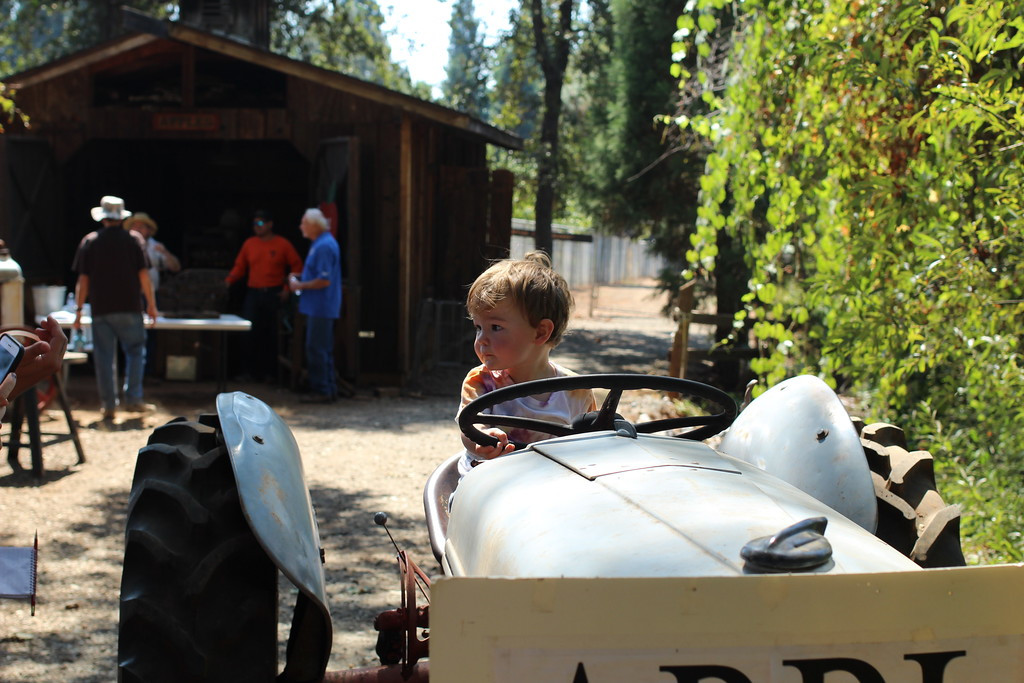 . Charlie Nelson tries out the apple farm tractor at the Days of Living History event held at the Gold Nugget Museum. Photo by Hannah Jones