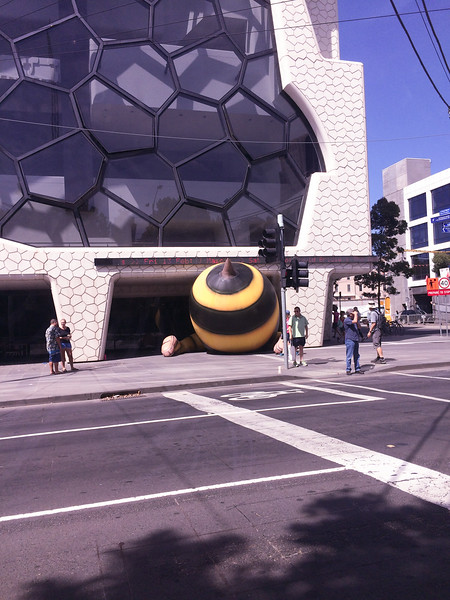 Bumblebee<br /> <br /> A méhecske feneke