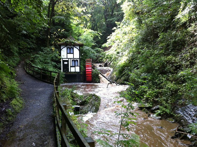 The waterwheel in Groudle Glen.